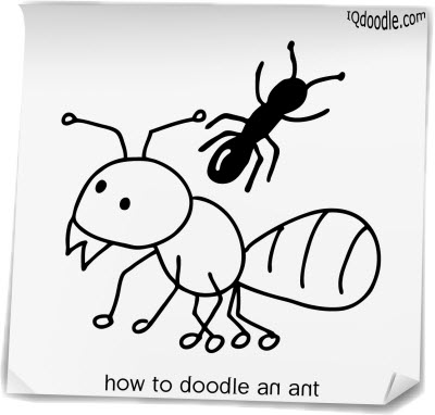 how to doodle ant small