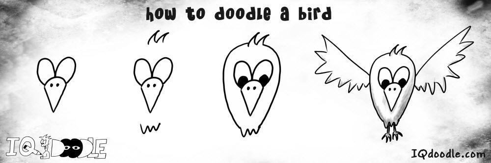 how to doodle bird