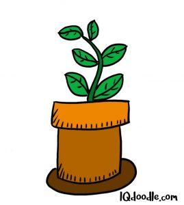 how to doodel a pot plant