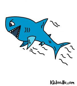 how to doodle a shark