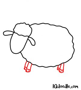 how to doodle a sheep 03