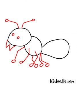 doodle an ant
