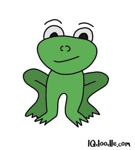 how to doodle a frog