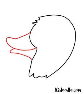 doodling a quack