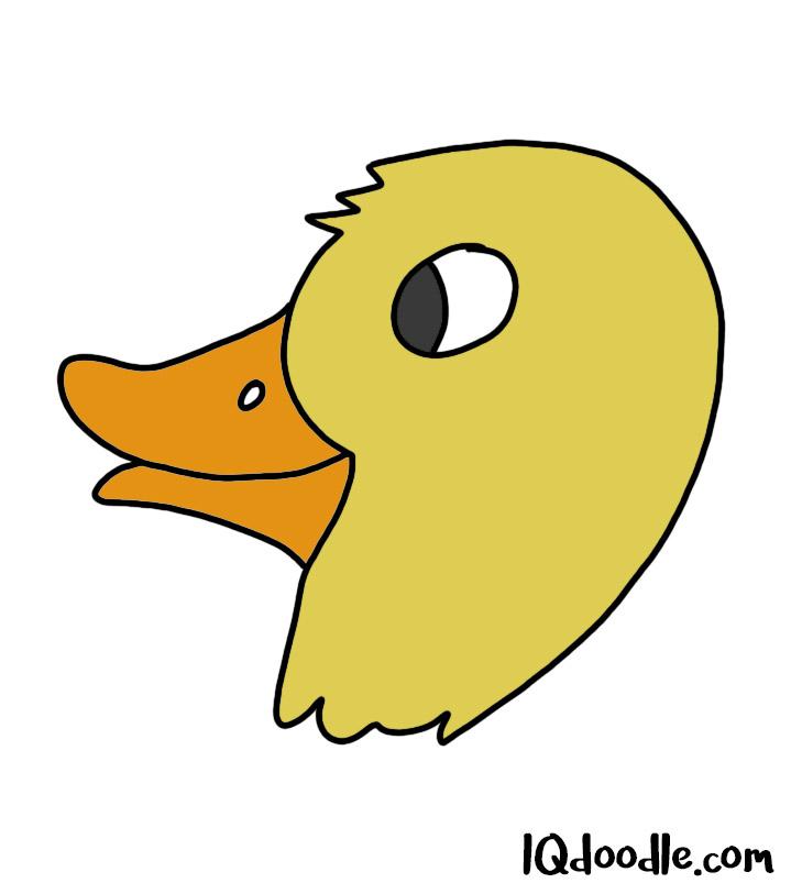 how to doodle a quack