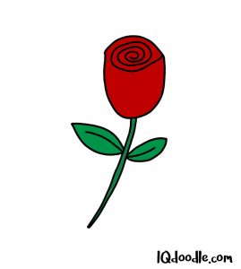 how to doodle a rose